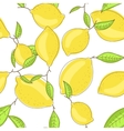 Yellow lemon fruits with leaf on branch white vector image vector image