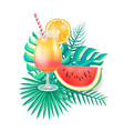 cocktail with straw orange sice decor watermelon vector image vector image