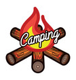 color vintage summer camp emblem vector image vector image