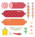 meat products ingredient and rustic elements vector image vector image