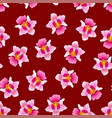 pink vanda miss joaquim orchid on red background vector image