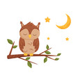 cute sleeping owlet sitting on a branch lovely vector image