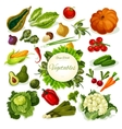 Vegetables vegan food poster vector image vector image
