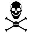 human skull and bones vector image
