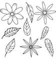 flower set in cartoon style vector image vector image