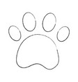 paw print pet shop concept vector image