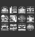 quality tobacco products cigars and cigarettes vector image