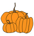 simple pumpkins on white background vector image vector image