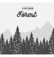 Vintage forest text label on winter tree landscape vector image