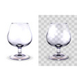 brandy glass transparent vector image