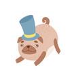 cute pug dog gentlemen wearing top hat funny vector image