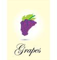 Garpes vector image vector image
