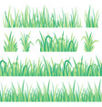 green grass field herb fresh garden meadow tuft vector image