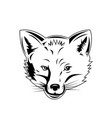 red fox head viewed from front retro black vector image vector image