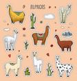 set of cute alpaca llamas or wild guanaco vector image vector image