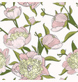 pink peony spring flowers seamless pattern texture vector image