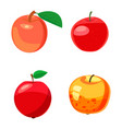 apple icon set cartoon style vector image vector image