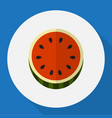 of berry symbol on watermelon vector image vector image
