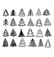 sketch fir tree christmas trees scribble pen vector image vector image