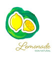 summer lemonade poster with two lemon icons vector image vector image