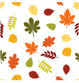 seamless autumn pattern vector image