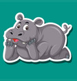 a rhinoceros character sticker vector image vector image
