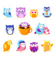 collection of cute owls cartoon characters vector image