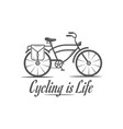 cycling is life logotype vector image