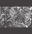grunge texture distress black grey rough trace b vector image vector image