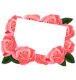 pink roses and card vector image vector image