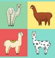 set of cute alpaca llamas or wild guanaco on the vector image vector image