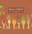 spices and herbs banner template different vector image