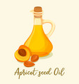 apricot oil and sliced fruitdrink in glass bottle vector image