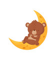 cute little bear sleeping on the moon lovely vector image