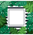 exotic tropical jungle frame with palm tree vector image