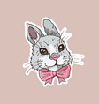 Hand drawn funny rabbit sticker vector image