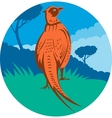 Pheasant bird walking with tree vector image vector image