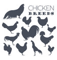 poultry farming chicken breeds icon set flat vector image vector image
