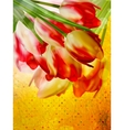 Retro card with tulips flowers EPS 10 vector image