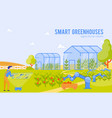 smart greenhouses agricultural robots cartoon vector image vector image