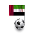 Soccer Balls with flag of United Arab Emirates vector image vector image