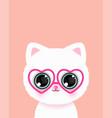 Cute little cat in glasses poster