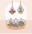 mini gardesn in crystal glass concept vector image vector image