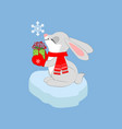 rabbit with present vector image vector image