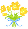 Tulips bouquet with blue ribbon vector image vector image