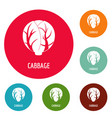 cabbage icons circle set vector image vector image