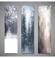 Christmas Banners Set 2 vector image vector image
