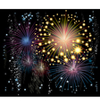 fireworks in the sky vector image