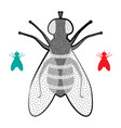 halftone fly icon vector image