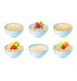 oat bowl oatmeal breakfast cup oat grain vector image vector image